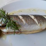 The whole sea bass a must for fish lovers.