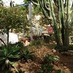 Il giardinetto interno dove si fa colazione