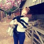 Cute lamb!