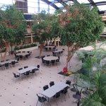 Atrium .... Peaceful Breakfast