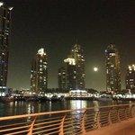 View along the Marina