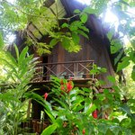 Photo de Red Frog Bungalows