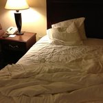 Foto Holiday Inn Express Bourbonnais (Kankakee / Bradley)