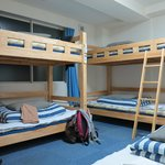 female dorm beds