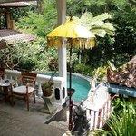 Relaxing Pool Area