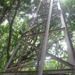 """The 'Lookout Tower"""""""