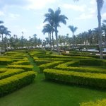 Hermoso Jardin Principal