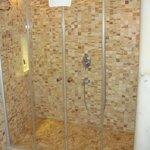 Room 301, Shower