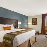 Wingate by Wyndham Richardson/Dallas Foto