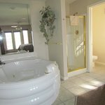 Tub, shower, and toilet in the bedroom