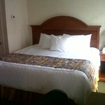 Room 709: Huge high bed