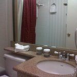 Room 709: Bath, counter & shower