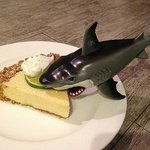 Sharks really like the Red Bar keylime pie!