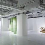 Pearl Lam Design Space