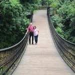 on the hanging bridge over the river