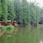 fishing cabins for rent