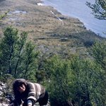 Cradle Mountain TAS