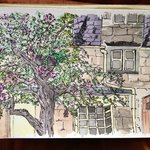 Water color I painted from our window on a rainy afternoon