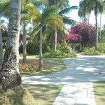 the resort's ground