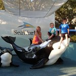 Great day at Seaworld