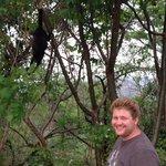 Cody and Mamma monkey