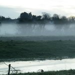 Evening mists on the levels