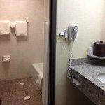 Foto de Drury Inn & Suites St. Louis-Southwest