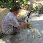 Ask Huw to organise some fresh coconut juice for you - yum !