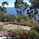 Jardines, un olor a flores delicioso!!! El olor del Eucalipto, las rosas y la Muña increíbles!!!