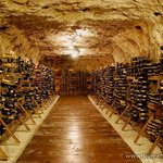 Museum of wine, Pleven, Bulgaria