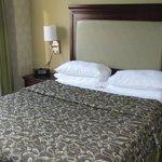 camera doppia letto queen stanza 1006