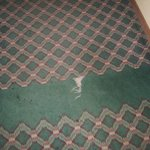 Hallway carpeting: ripped/torn