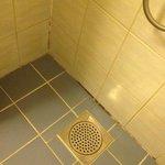 Möglig och smutsig dusch
