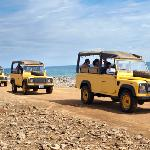 Rent a jeep to explore Aruba's adventurous side
