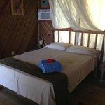 Blenny cabin