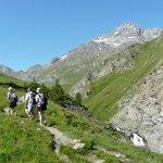Randonnées en montagne