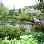 like Monet's garden