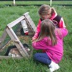 Kids enjoying the animals on the farm