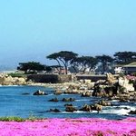 Our Spectacular Location at Lover's Point on Monterey Bay