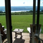 View from the room overlooking the vineyards and lake.