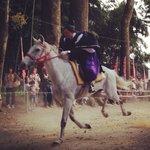 古式競馬の行事「足伏走馬」が行われる神社