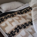 ベッドの毛布がアルパカ模様だったのがかわいかった