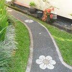 The elegant path