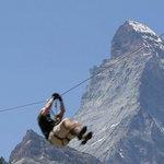 Photo of Forest Fun Park Zermatt