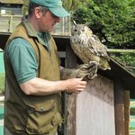 Bird of prey talk at Tamar Otter & Wildlife Centre