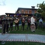 Mariachis playing after the wedding ceremony