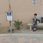 DisneyShuttleのバス停(駐車場の一角)
