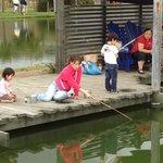 釣り堀でエビを釣ってます