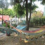 Wonderful courtyard hammocks