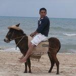 sarko sur la plage